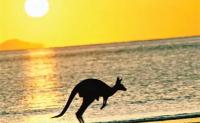 未来20年里澳洲最热门的6大职业详解