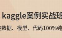 kaggle案例实战_kaggle入门_kaggle视频教程